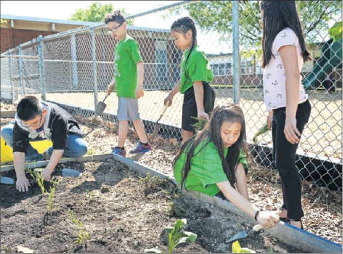 "Eastlawn Elementary School Garden Club members transfer various flowers into their ""edible garden"""
