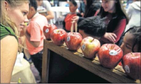 Volunteers help elementary school students from the Alamance-Burlington School System choose fruits
