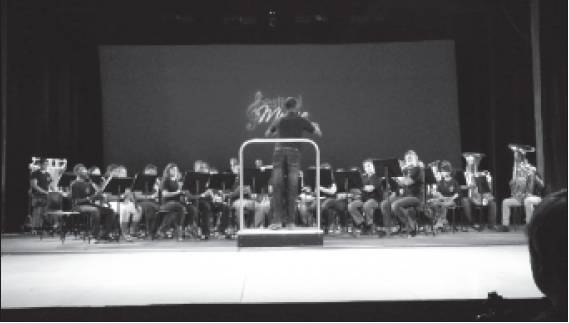 The Williams High School Band, top, and Orchestra, bottom, performed at the Carowinds Festival of Music on April 11. Both ensembles earned Superiors, the highest rating, from the panel of judges.