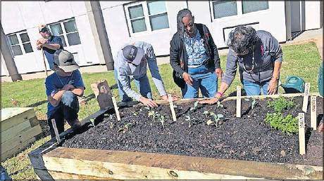 Western's Future Farmers of America was awarded $1,200 through an FFA Living to Serve grant, and under Service Coordinator Aleasha Garrison, students worked a full day to construct plant beds at Burlington Homes.